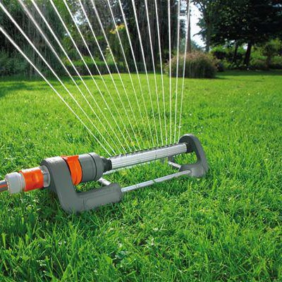 Increase Your Property Value & Ward Off Pests With Proper Lawn Care